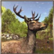 动物猎人丛林狙击手射击安卓版下载