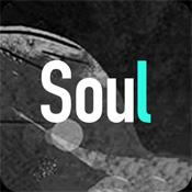 soul APP下载安装安卓版下载